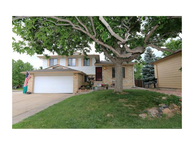 4828 S Swadley Street, Morrison, CO 80465 (MLS #5597834) :: 8z Real Estate