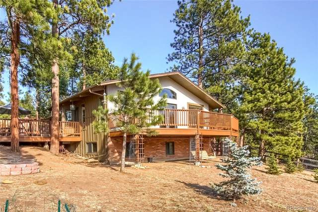 28907 Cedar Circle, Evergreen, CO 80439 (#5598510) :: Bring Home Denver with Keller Williams Downtown Realty LLC