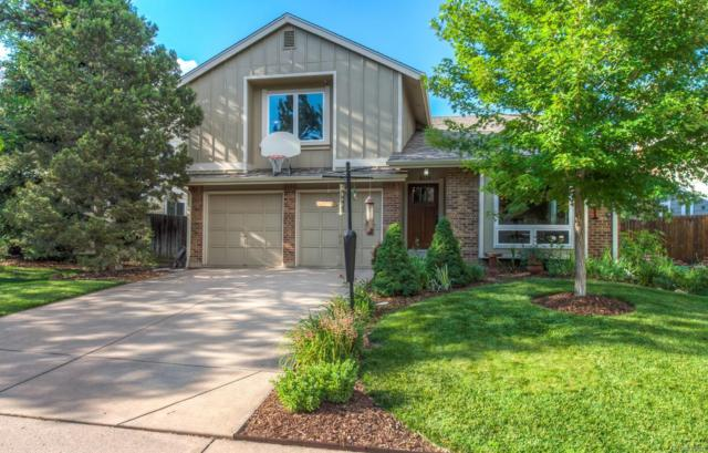 8118 S Spruce Circle, Centennial, CO 80112 (#5599326) :: The Pete Cook Home Group