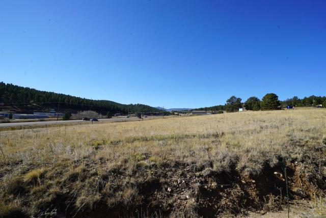 42 Co Rd 43A Road, Bailey, CO 80421 (MLS #5600159) :: 8z Real Estate