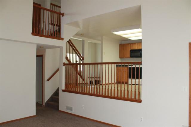 2232 Deer Trail Creek Drive, Brighton, CO 80601 (#5600332) :: The Peak Properties Group