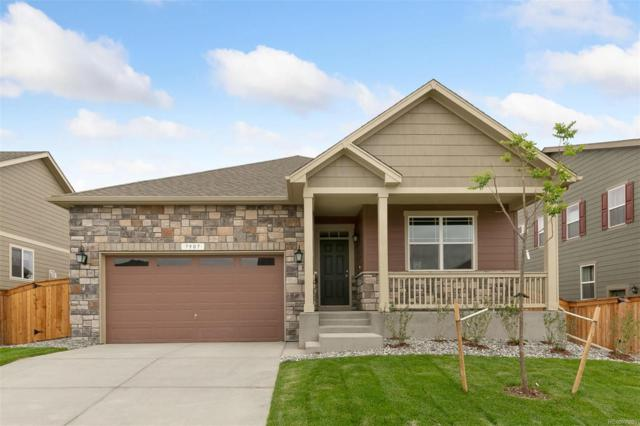 13801 Roslyn Street, Thornton, CO 80602 (#5600904) :: Wisdom Real Estate