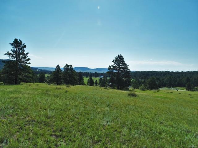 8653 N Teacup Grove Road, Elbert, CO 80106 (MLS #5600948) :: 8z Real Estate