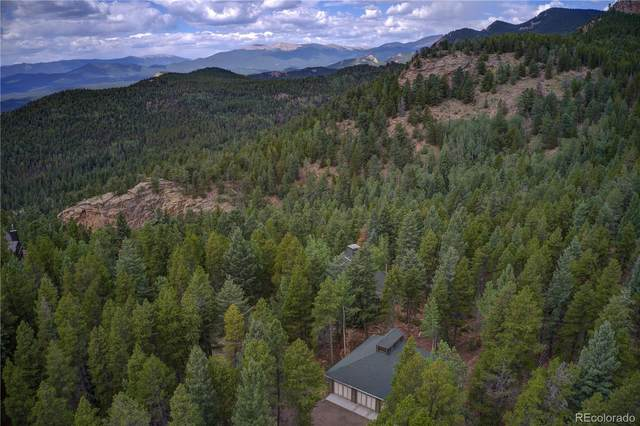10925 Elizabeth Drive, Conifer, CO 80433 (#5604080) :: The DeGrood Team