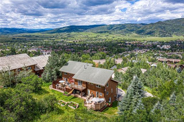 2678 Longthong Court, Steamboat Springs, CO 80487 (#5608788) :: Mile High Luxury Real Estate