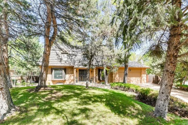 5189 W Maplewood Avenue, Littleton, CO 80123 (#5609138) :: Wisdom Real Estate