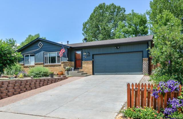2443 Montmorency Street, Fort Collins, CO 80526 (#5612988) :: The Heyl Group at Keller Williams