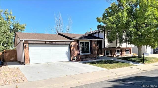 11029 Eudora Circle, Thornton, CO 80233 (#5612989) :: iHomes Colorado