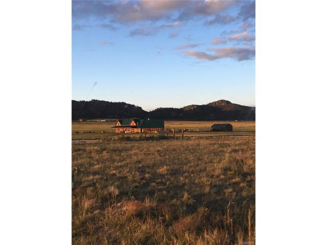 1855 Oak Grove Circle, Westcliffe, CO 81252 (MLS #5618704) :: 8z Real Estate