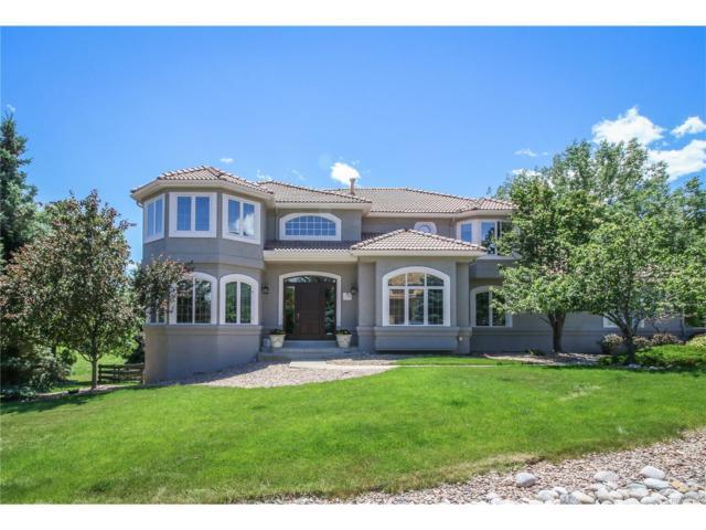 18 Black Bear Lane, Littleton, CO 80127 (MLS #5619684) :: 8z Real Estate