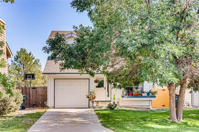 13342 Birch Circle, Thornton, CO 80241 (MLS #5620368) :: 8z Real Estate
