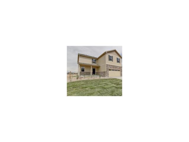 13652 Spruce Street, Thornton, CO 80602 (MLS #5620892) :: 8z Real Estate