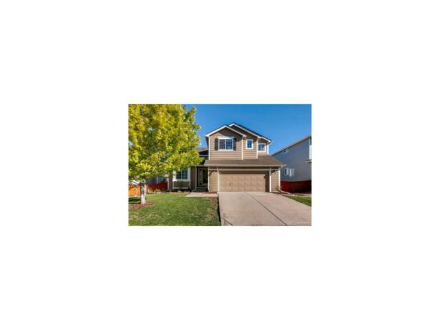 427 English Sparrow Trail, Highlands Ranch, CO 80129 (MLS #5623137) :: 8z Real Estate