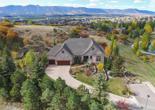 12426 Oak Hollow Court, Colorado Springs, CO 80921 (#5625951) :: Wisdom Real Estate