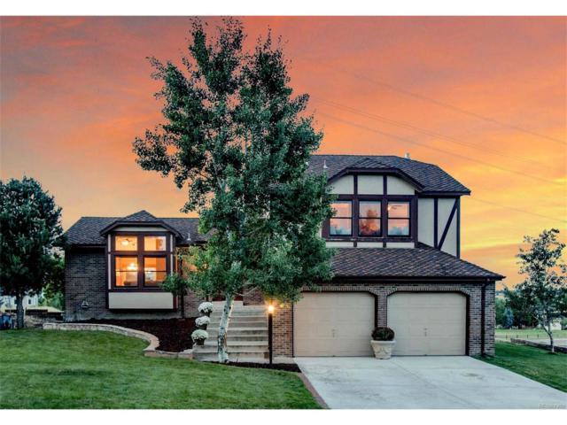 20167 E Williamson Drive, Parker, CO 80138 (MLS #5626763) :: 8z Real Estate