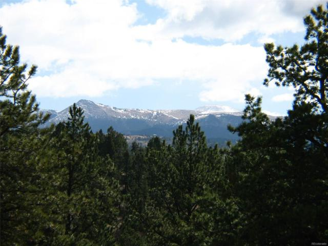 5656 County 1 Road, Florissant, CO 80816 (MLS #5627072) :: 8z Real Estate
