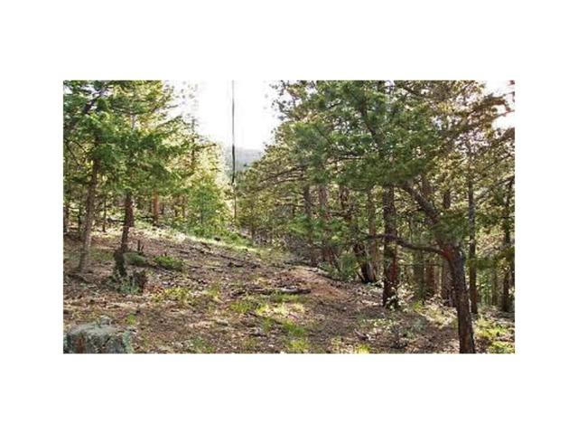 0 Elk Valley, Evergreen, CO 80439 (MLS #5627668) :: 8z Real Estate