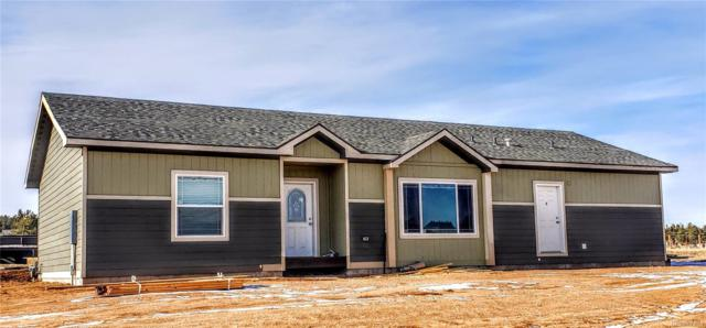 205 Calle De La Nieva, Florissant, CO 80816 (MLS #5627791) :: The Biller Ringenberg Group