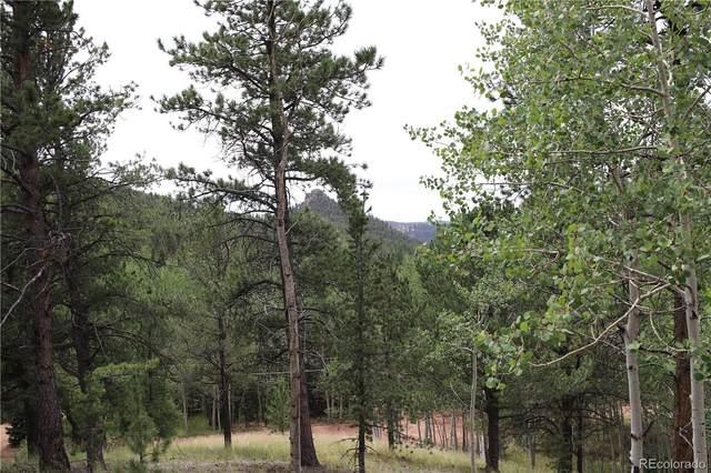 54 Eagle Drive, Divide, CO 80814 (MLS #5628619) :: 8z Real Estate