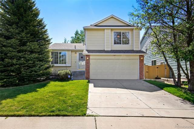 2934 Basil Place, Superior, CO 80027 (#5630161) :: Arnie Stein Team | RE/MAX Masters Millennium