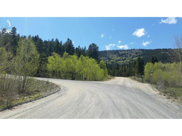 17 Paradise Valley Parkway, Black Hawk, CO 80422 (MLS #5634799) :: 8z Real Estate