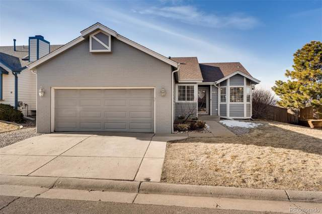 995 Cobblestone Drive, Highlands Ranch, CO 80126 (#5636379) :: The HomeSmiths Team - Keller Williams