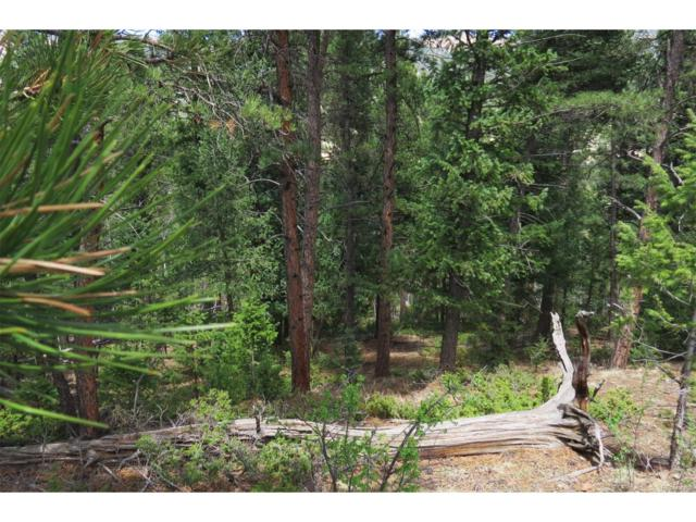 12486 Cindy Avenue, Pine, CO 80470 (#5639964) :: The Peak Properties Group