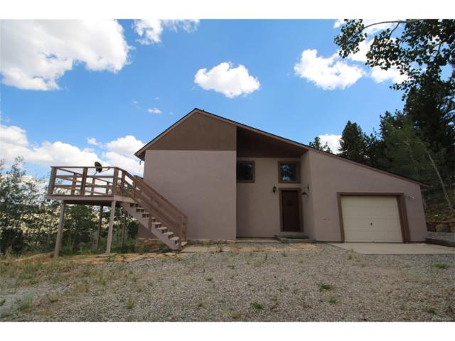2336 Redhill Road, Fairplay, CO 80440 (MLS #5642579) :: 8z Real Estate