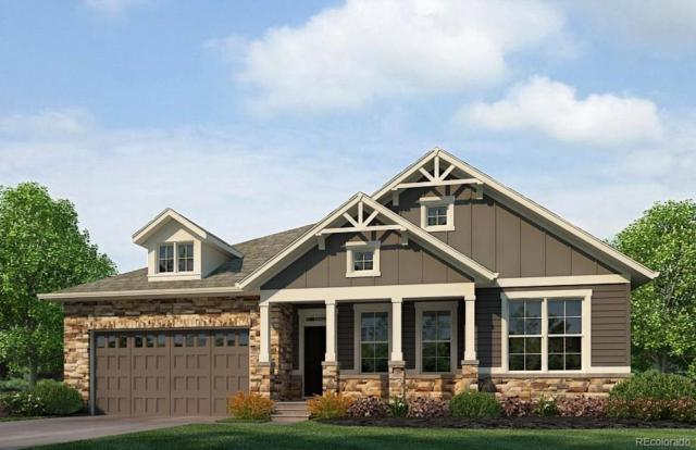 1646 Wingfeather Lane, Castle Rock, CO 80108 (#5646556) :: Harling Real Estate