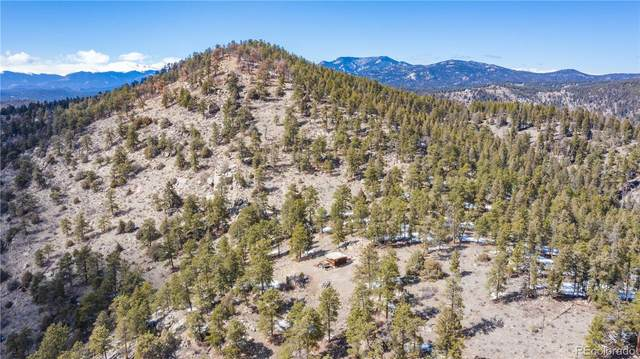 14336 Wamblee Trail, Conifer, CO 80433 (#5647694) :: Berkshire Hathaway Elevated Living Real Estate