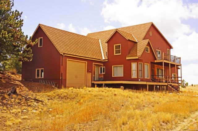 249 Vaquero Way, Como, CO 80432 (#5648005) :: HomePopper