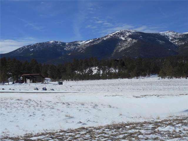 30992 Elk Meadow, Buena Vista, CO 81211 (#5648579) :: Bring Home Denver with Keller Williams Downtown Realty LLC