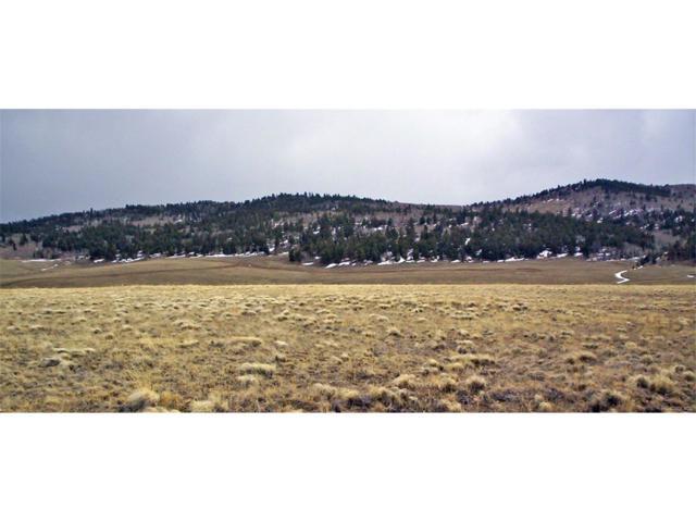 199 Wagon Wheel Road, Hartsel, CO 80449 (#5650551) :: Thrive Real Estate Group