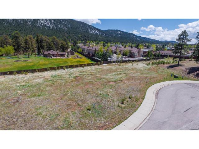 1215 Cottontail Trail, Woodland Park, CO 80863 (#5653313) :: Structure CO Group