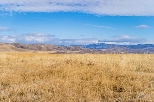 38370 Cattails Court, Hayden, CO 81639 (MLS #5656786) :: Neuhaus Real Estate, Inc.