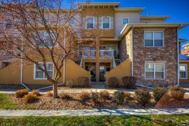 810 Lucca Drive #810, Evans, CO 80620 (MLS #5656819) :: Bliss Realty Group