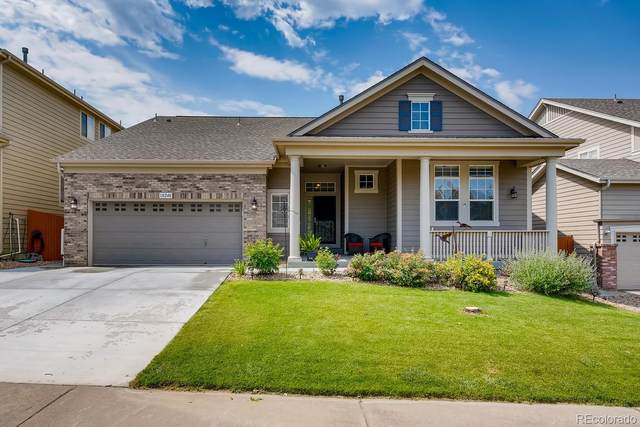 10240 Cavaletti Drive, Littleton, CO 80125 (MLS #5658426) :: 8z Real Estate