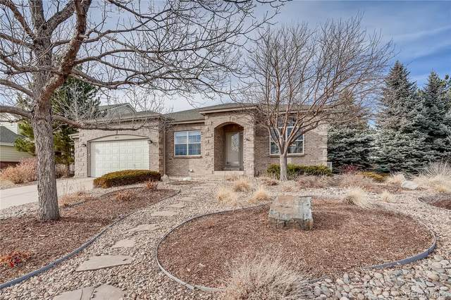 8215 Wetherill Circle, Castle Pines, CO 80108 (#5660007) :: The Margolis Team