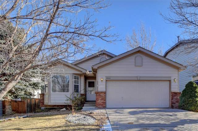 5900 Cheetah Chase, Littleton, CO 80124 (#5660084) :: Bring Home Denver with Keller Williams Downtown Realty LLC