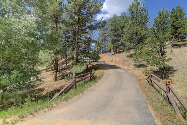 351 Deep Lake Drive, Divide, CO 80814 (#5663453) :: The DeGrood Team