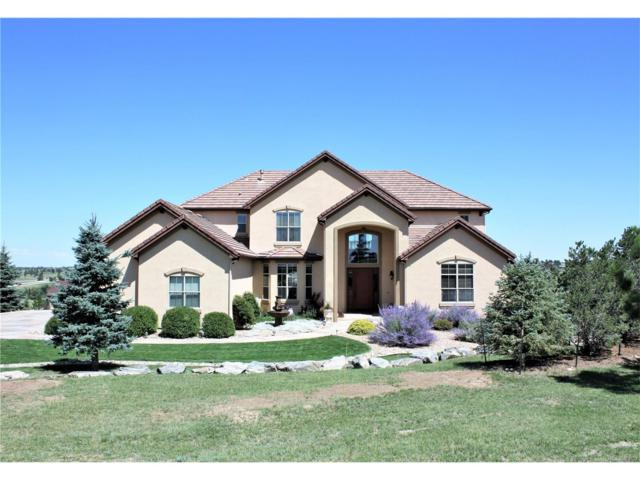 9893 Red Sumac Place, Parker, CO 80138 (MLS #5663770) :: 8z Real Estate