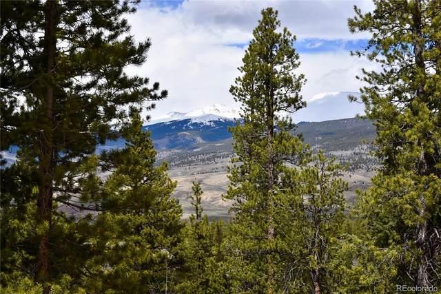 313, 275, 255 Mount Elbert Drive, Twin Lakes, CO 81251 (#5665517) :: Compass Colorado Realty