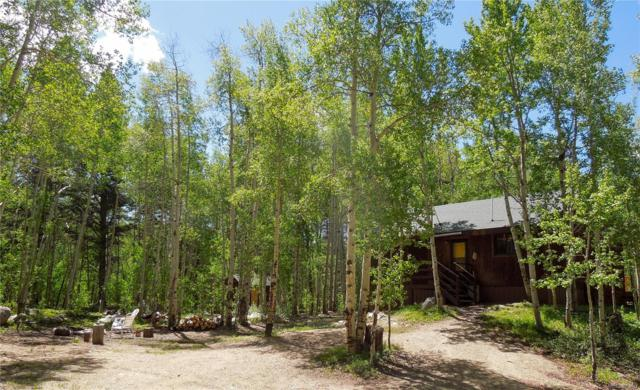 2602 Empire Valley Drive, Leadville, CO 80461 (MLS #5665622) :: 8z Real Estate