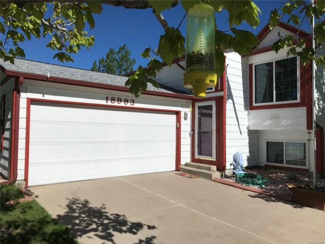 18993 E Carmel Drive, Aurora, CO 80011 (#5667357) :: 5281 Exclusive Homes Realty