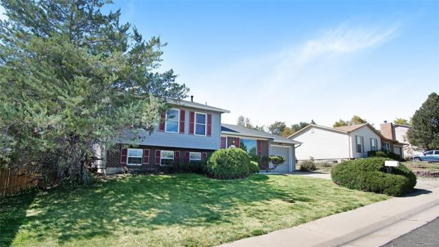 9835 Detroit Street, Thornton, CO 80229 (MLS #5668588) :: 8z Real Estate