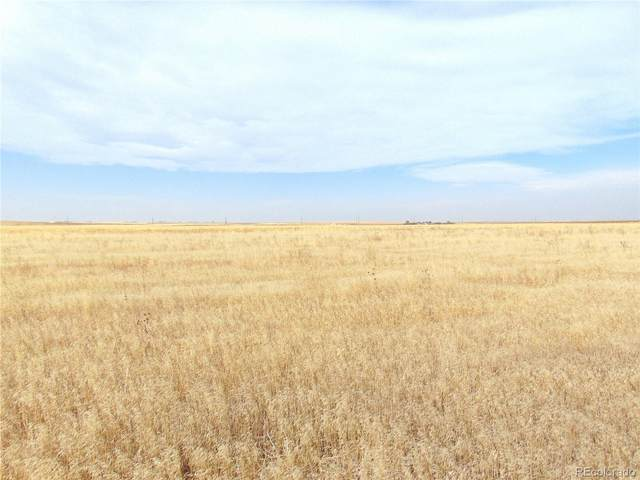 13975 Harback Road, Bennett, CO 80102 (MLS #5668886) :: 8z Real Estate