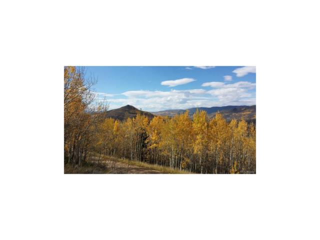 680 County Road 413, Granby, CO 80446 (#5675047) :: The DeGrood Team