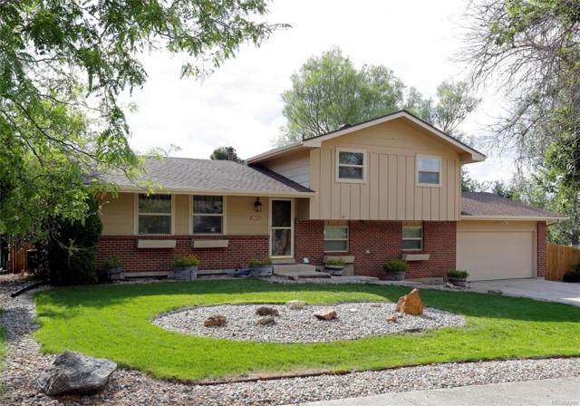 4819 Escapardo Way, Colorado Springs, CO 80917 (#5676126) :: Bring Home Denver