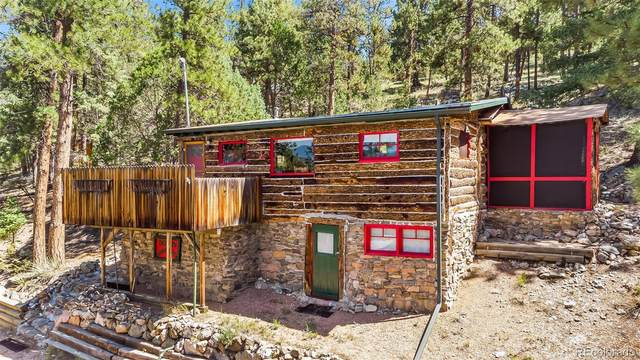 15504 S Wandcrest Drive, Pine, CO 80470 (#5678761) :: The DeGrood Team