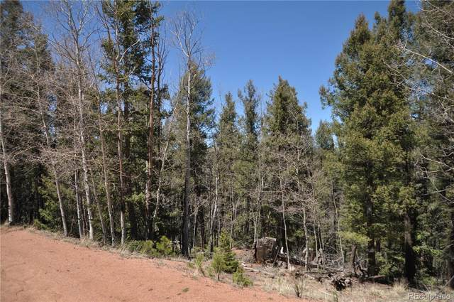 27 Midday Place, Cripple Creek, CO 80813 (#5678882) :: The Margolis Team